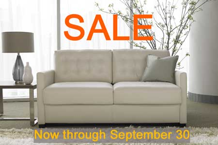 comfort sleeper sale sale