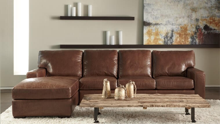 Danford Leather Sectional - Transitions