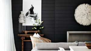 Black shiplap living room