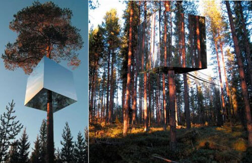 I've always wanted to live in a treehouse post image