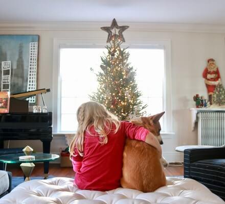 O Christmas Tree post image