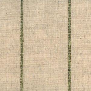 EvaLee fabric